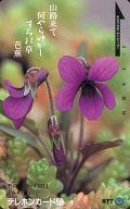 すみれ(菫)「山路来て 何やらゆかし すみれ草/芭蕉」 野の花シリーズNO.1