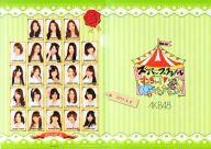 チームK(AKB48) A4クリアファイル 「AKB48スーパーフェスティバル~日産スタジアム、小(ち)っちぇっ!小(ち)っちゃくないし!!~」