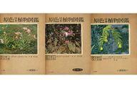<<科学・自然>> 原色日本植物図鑑 上中下巻セット / 北村四郎/村田源/堀勝