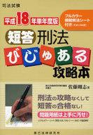<<政治・経済・社会>> 平18単年 短答刑法びじゅある攻略本 / 佐藤剛志