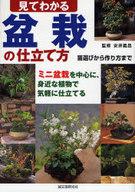<<趣味・雑学>> 見てわかる 盆栽の仕立て方 / 安井義昌