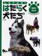 <<児童書・絵本>> しらべよう!はたらく犬たち 3 牧羊犬・そり犬 / 中島真理