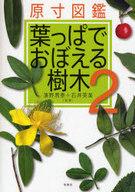 <<科学・自然>> 原寸図鑑 葉っぱでおぼえる樹木 2 / 濱野周泰