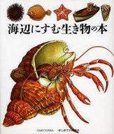 <<科学・自然>> 海辺にすむ生き物の本