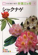 <<産業>> シャクナゲ NHK趣味の園芸:作業12か月15 / 脇坂誠