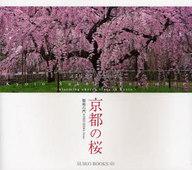 <<芸術・アート>> 京都の桜 / 福島右門