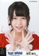 岩花詩乃/バストアップ・クリスマスver./HKT48×ヴィレッジヴァンガード限定ランダム生写真(VILLAGE/VANGUARD EXCITNG BOOK STORE)