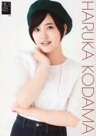 兒玉遥/上半身・A4サイズ/AKB48 CAFE & SHOP限定 HKT48 A4サイズ生写真ポスター 第76弾