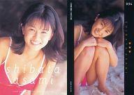 034 : 柴田あさみ/レギュラーカード/AVANT GARDE OFFICIAL CARD COLLECTION