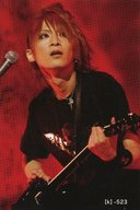 【k】-523 : ナイトメア/咲人/「NIGHTMARE Fanclub Limited Live 2008」会場限定販売 Official Tradingcards