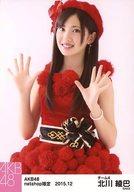 北川綾巴/膝上/AKB48 2015年12月 net shop限定個別生写真 「2015.12」