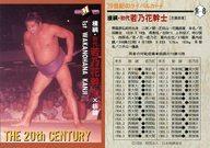 R-8 [レギュラーカード] : 横綱・初代 若乃花幹士