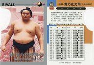 R-2 [インサートカード] : 横綱・貴乃花光司