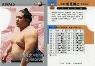 R-4 [インサートカード] : 関脇・魁皇博之
