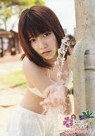 島崎遥香/⑨/DVD「AKB48海外旅行日記 -ハワイはハワイ-」特典