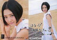R017N : 兒玉遥/ノーマルカード/HKT48 トレーディングコレクション