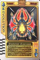 スペードK : EVOLUTION/エボリューションコーカサス