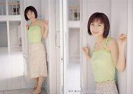 017 : 仲根かすみ/レギュラーカード/SHIN YAMAGISHI TRADING PHOTOCARD COLLECTION 仲根かすみ