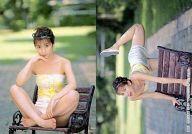 060 : 仲根かすみ/レギュラーカード/SHIN YAMAGISHI TRADING PHOTOCARD COLLECTION 仲根かすみ