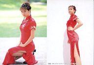 090 : 仲根かすみ/レギュラーカード/SHIN YAMAGISHI TRADING PHOTOCARD COLLECTION 仲根かすみ