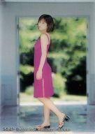 S-5/27 : 仲根かすみ/クリアカード/SHIN YAMAGISHI TRADING PHOTOCARD COLLECTION 仲根かすみ