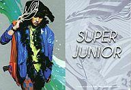 SJ100 : シンドン/SJ100/SuperJunior-スターコレクションカード