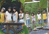 No.113 : ZONE/レギュラーカード/ZONE 1st トレーディングカード Cute & Powerful Card