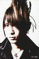 【f】-293 : ナイトメア/咲人/「Nightmare TOUR 2007 the WORLD RULER」会場限定販売 Official Tradingcards