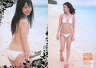 SP06 : 秋山奈々/(金箔押し)/HIT'S PREMIUM 秋山奈々 トレーディングカード