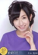 片山陽加/AKB48 薬師寺奉納公演2010「夢の花びらたち」