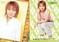 NO.262 : 保田圭/ノーマル/モーニング娘。 TRADING COLLECTION