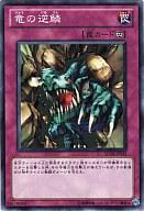 SD19-JP035 [N] : 竜の逆鱗