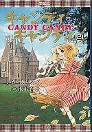 ランクB)キャンディキャンディ(愛蔵版) 全2巻セット / いがらしゆみこ