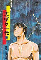 ランクB)大ぼら一代(文庫版) 全11巻セット / 本宮ひろ志