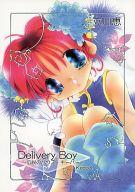 <<オリジナル>> ランクB)Delivery Boy keep 3 伝説のハウス・キーパー / エム・ティースタジオ
