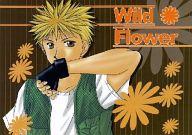 <<その他アニメ・漫画>> Wild Flower (美堂蛮、天野銀次) / 牛乳腐朽協会