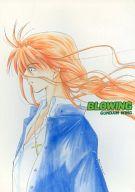 <<ガンダムW>> BLOWING  (ヒイロ、デュオ) / LIVE DUO