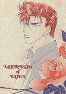 <<スラムダンク>> LABYRINTH of EDEN (流川楓、桜木花道) / HODO2 PROJECT
