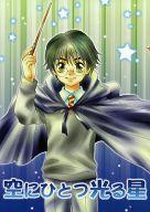 <<ハリーポッター>> 空にひとつ光る星 (ハリー、ロン、ハーマイオニー、他) / brightening hope