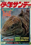 週刊少年サンデー 1969年6月8日号 24