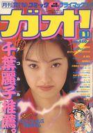 電撃コミック ガオ! 1994年11月号 GAO