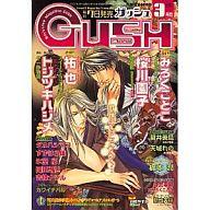 GUSH 2007/3