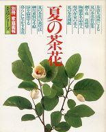 夏の茶花 別冊 家庭画報 茶道シリーズ 8