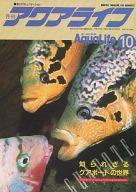 月刊 アクアライフ 1992年10月号 No.159