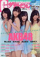 付録付)グラビアザテレビジョン vol.19 AKB48