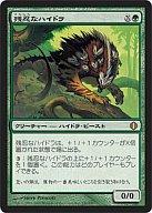 [R] : 残忍なハイドラ/Feral Hydra