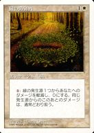[C] : 緑の防御円/Circle of Protection: Green