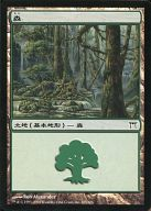 [C] : 森/Forest(305/306)