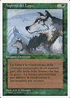[R] : 【イタリア語版】Aspect of Wolf/狼の血
