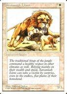 [R] : Savannah Lions/サバンナ・ライオン